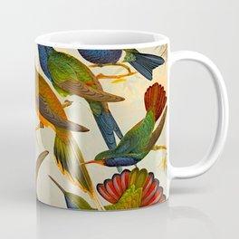 Translate Album de aves amazonicas - Emil August Göldi - 1900 Colorful Hummingbirds Coffee Mug