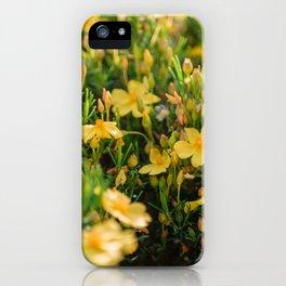 Tiny Yellow Flowers iPhone Case