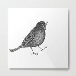 mr screamy the bird yells at the top of his lungs Metal Print