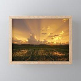 Langkawi Feilds Framed Mini Art Print