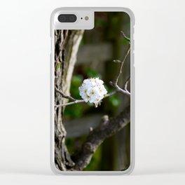 Singular Cherry Blossom Clear iPhone Case