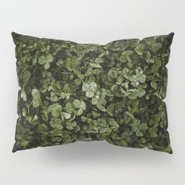 Clover with Rain Drops Pillow Sham