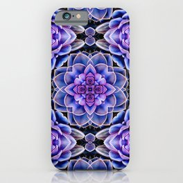 Echeveria Bliss Two iPhone Case
