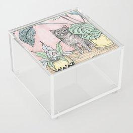 Cat Acrylic Box