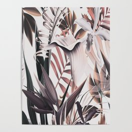 TROPICAL PLANTS - 250918/1 Poster