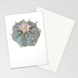 Peyote Cacti Stationery Cards