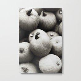 gourds XP Metal Print