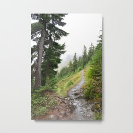 Alpine Ridgeline Trail Woods Forest Mountain Mist Washington Mount Baker Northwest Outdoors Nature W Metal Print