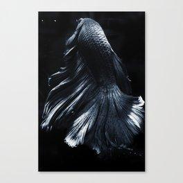 Sakana 01 Canvas Print
