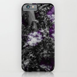 First Snow Of The Season iPhone Case