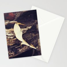Beach Feathers Stationery Cards