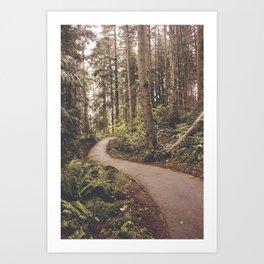 Curved Path Redmond Washington, Original Fine Art Photography Architecture Home Decor Gift Icon Art Print