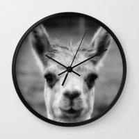 alpaca Wall Clocks featuring Alpaca by Amie Amyotte