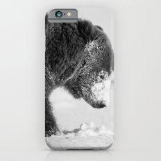 Alaskan Grizzly Bear in Snow, B & W - I iPhone 6s Slim Case