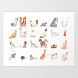 Cat collection Art Print