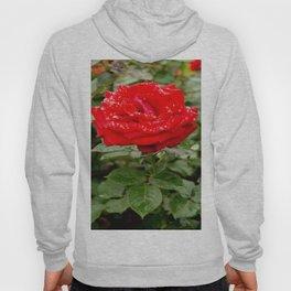 Drop Dead Rose-1 Hoody