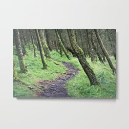 The Leaning Forest Metal Print