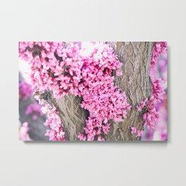 Bark Flowers Metal Print
