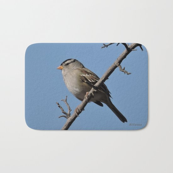 A White-Crowned Sparrow Eyes the Botanic Garden Bath Mat