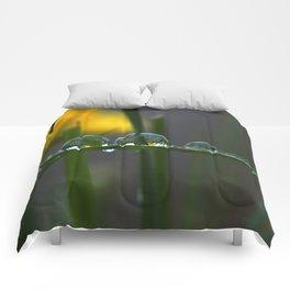 GREEN ART Comforters