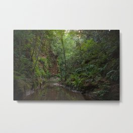 aptos creek canyon Metal Print