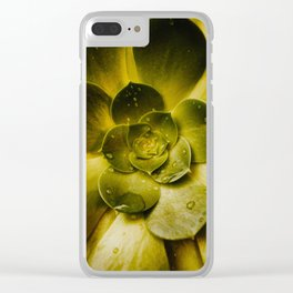 Details in the Succulent Clear iPhone Case