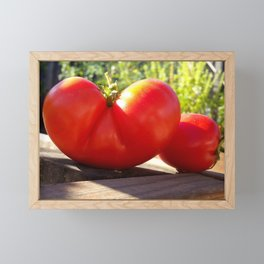 Tomato love Framed Mini Art Print