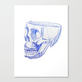 SKULL BLUE PEN SIDE Canvas Print