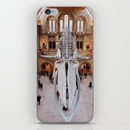 Hope the Blue Whale at the Natural History Museum iPhone Skin