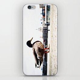 duckzilla iPhone Skin