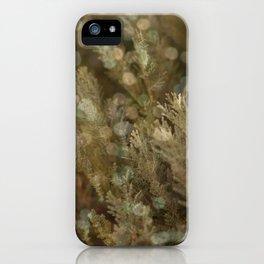 Pine and bokeh II iPhone Case