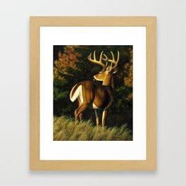 Whitetail Deer Trophy Buck Framed Art Print