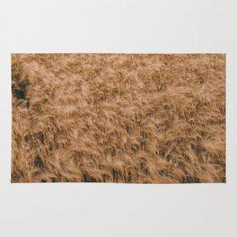 Vintage Field 04 Rug