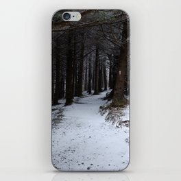 Winter on the AT iPhone Skin