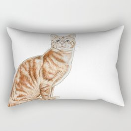 Happy Tabby Cat Rectangular Pillow