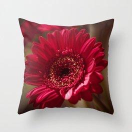 Red Gerbera II Throw Pillow