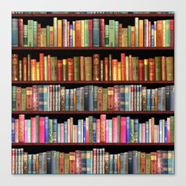 Vintage books ft Jane Austen & more Canvas Print