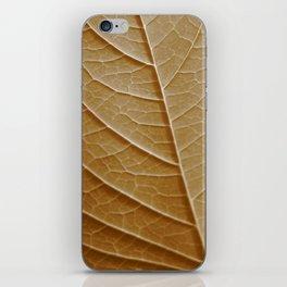 Sepia Leaf Veins iPhone Skin
