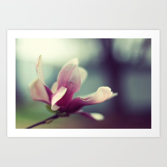 Magnolia Bloom Art Print