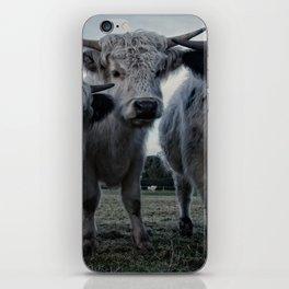 The Three Shaggy Cows iPhone Skin