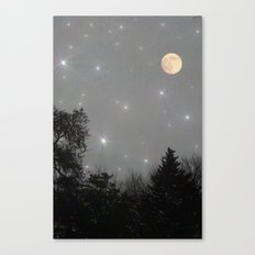 Moon Dust Canvas Print