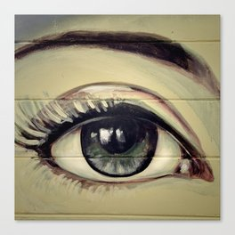 Eyes are Windows to the Soul Canvas Print