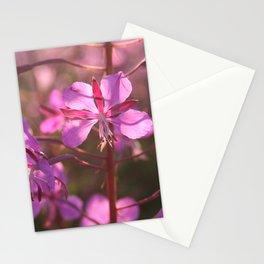 Geitrams makro Stationery Cards