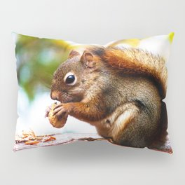 Red Squirrel Thanksgiving Pillow Sham