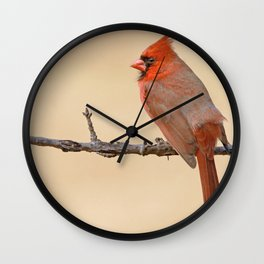 On Fire at Breeding Time Wall Clock