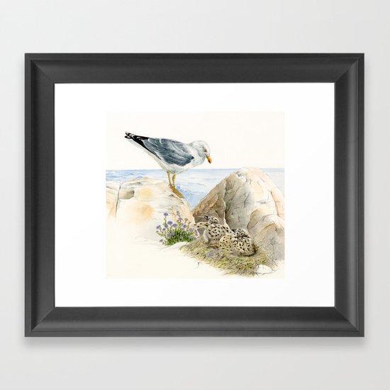 Seagull  - nesting bird on the Ligurian coast Framed Art Print