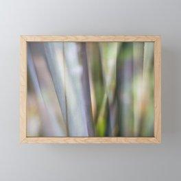 Entranced Framed Mini Art Print