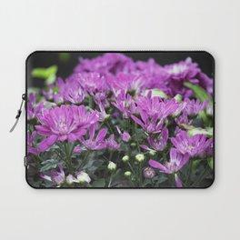 Longwood Gardens Autumn Series 219 Laptop Sleeve
