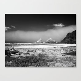 Rocks at Heceta Head Canvas Print