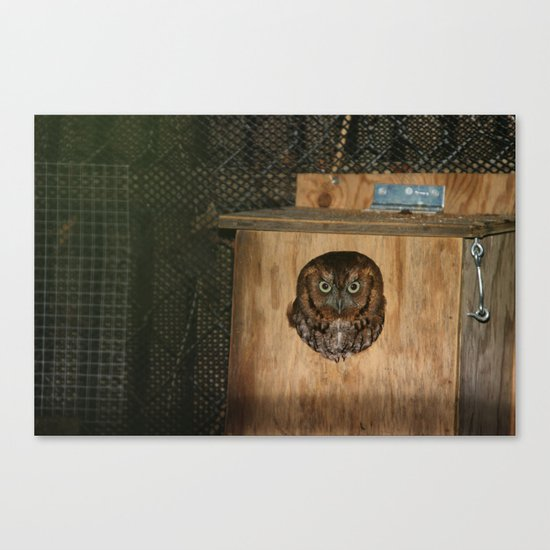 Hibou means owl Canvas Print